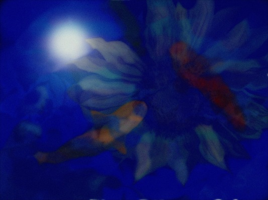 Twilight on Vincent's Pond